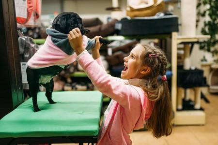 Какого щенка купить дорогого или подешевле